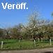 Veröff.: Jagel & al., Artenvielfalt auf einer Obstwiese in Bochum